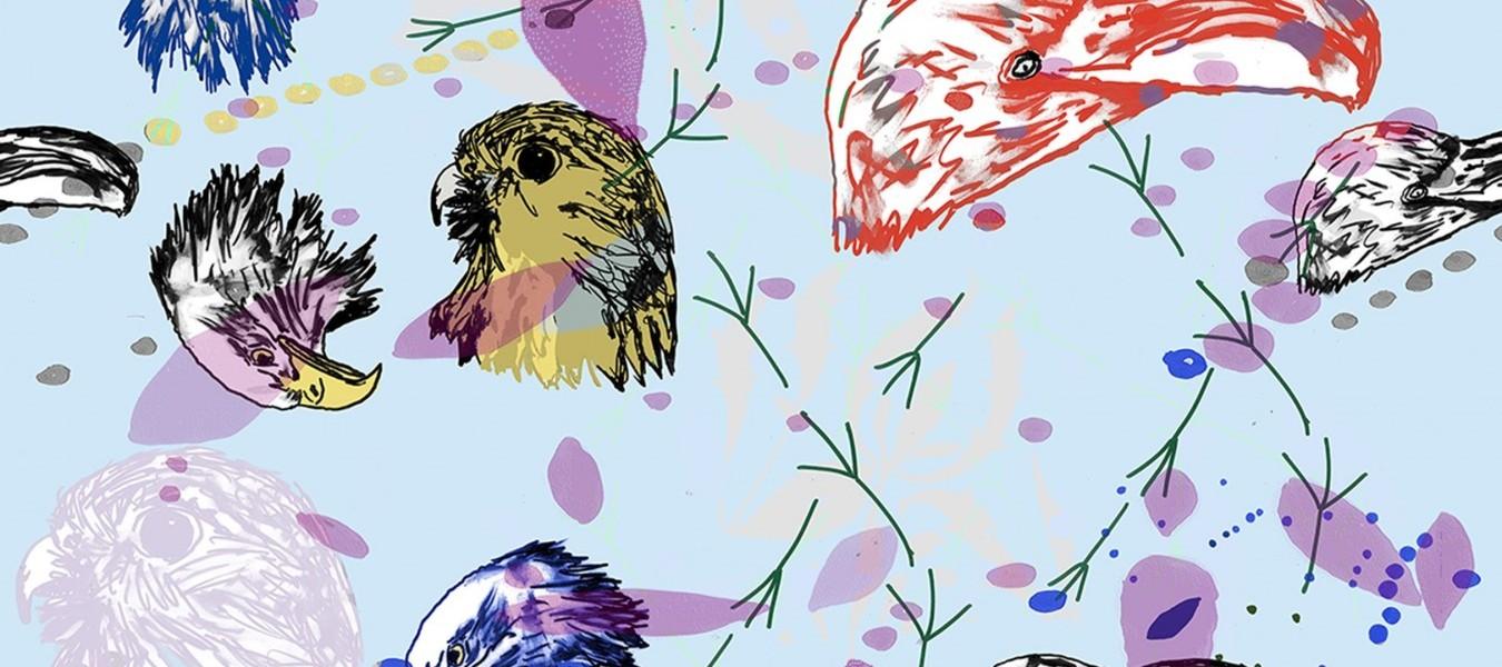 Charlene Clempson, Birds